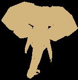 Slon.it